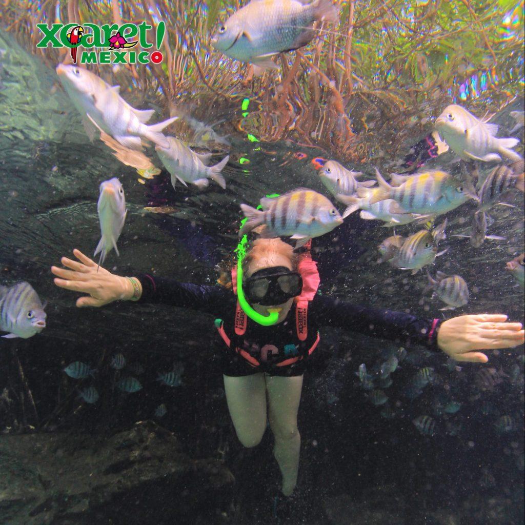 Xcarest Meksyk snorkeling