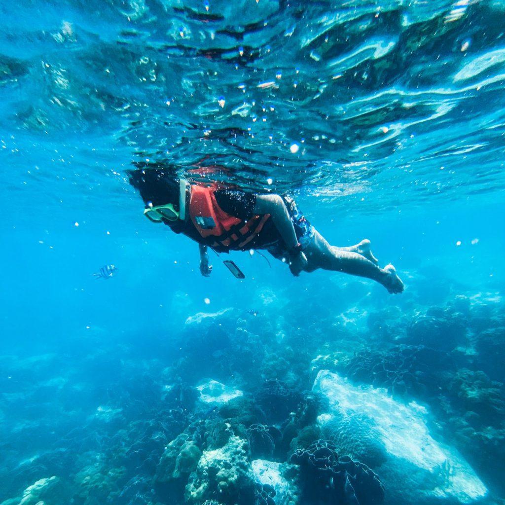 snorkeling rafa ryby